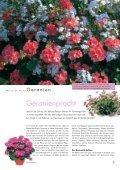 GartenHaus - Wyss - Seite 4
