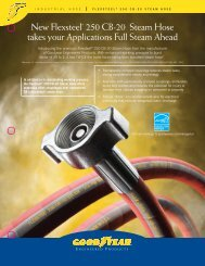 Flexsteel Steam Hose Flyer - IBT, Inc.