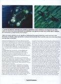 ver enlace - Instituto de Conservación de Ballenas - Page 5