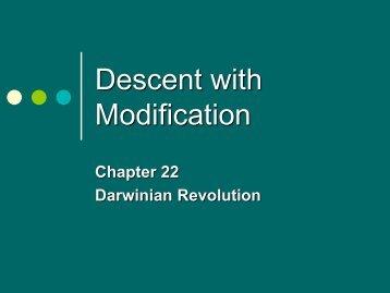 descent w modification