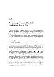 Die Grundgesetze der Physik in gekr ¨ummter Raum-Zeit