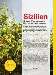 Grosse Weine aus dem Herzen des Mittelmeers