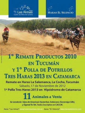 Catálogo Tucumán 2012 - Haras El Silencio