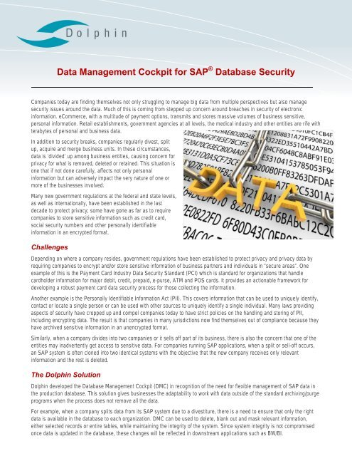 Dolphin Data Management Cockpit for SAP Database Security