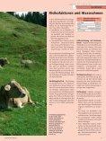 öffnen - Seite 3