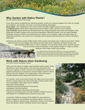 Why Garden with Native Plants? Work with Nature when Gardening ...