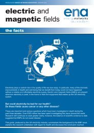 electric and magnetic fields - Energy Networks Association