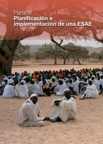 Parte III Planificación e implementación de una ESAE