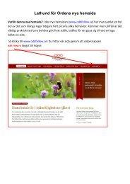 Instruktion för Ordens nya hemsida - Vår loge