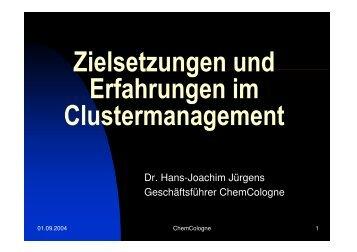 Zielsetzungen und Erfahrungen im Clustermanagement