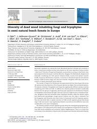 Diversity of dead wood inhabiting fungi and bryophytes in semi ...