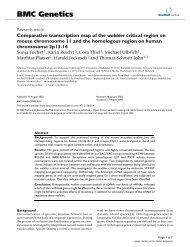 Comparative transcription map of the wobbler critical region on ...