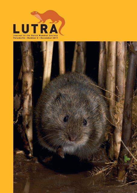 Volume 54 – Number 2 – December 2011 - Zoogdierwinkel
