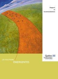 Rapport Clair.PDF - AMQ (ASSOCIATION MÉDicale du québec)