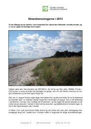Strandrensning 2013 - ssgsolrod.dk