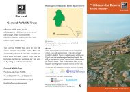 Priddacombe Downs Nature Reserve - Cornwall Wildlife Trust