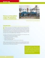 coque (de petróleo) - Instituto de Investigaciones Eléctricas