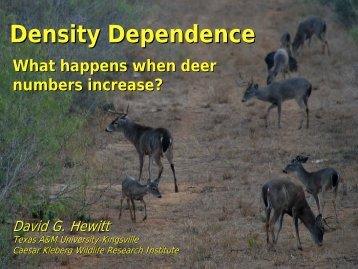 Too Many Deer - Caesar Kleberg Wildlife Research Institute - Texas ...
