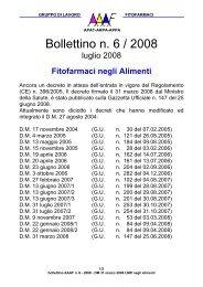 Bollettino n. 6 / 2008