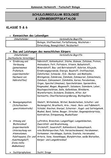 schulcurriculum biologie & lernbegriffskatalog klasse 5 & 6