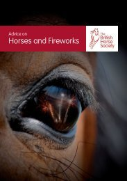 Advice on Horses and Fireworks - (ESC) at Rutgers