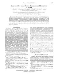Giant Vesicles under Flows - American Chemical Society Publications