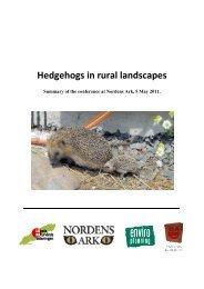 Hedgehogs in rural landscapes