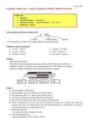 Fyzikální veličina síla – označení, jednotky, měřidla, základní vlastnosti
