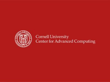 David Lifka Cornell University Center for Advanced Computing lifka ...