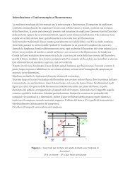 Introduzione : il microscopio a fluorescenza