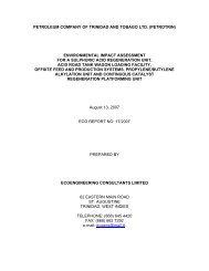 Executive Summary - Environmental Management Authority