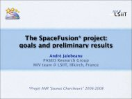 The SpaceFusion* project: goals and preliminary results