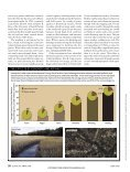 Wading in Waste - Precaution - Page 7