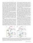 Stepwise Evolution of Races in Fusarium oxysporum f. sp. ciceris ... - Page 6