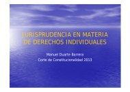 Jurisprudencia en Materia de Derechos Individuales por Manuel ...