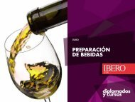 PREPARACIÓN DE BEBIDAS - Universidad Iberoamericana León