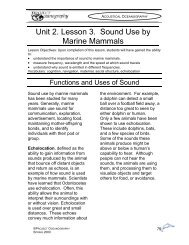 Unit 2. Lesson 3. Sound Use by Marine Mammals