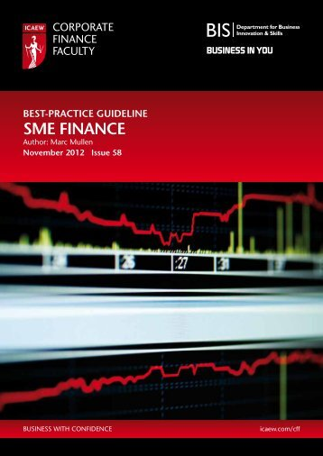 Best practice guideline-SME Finance - ICAEW
