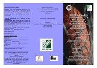Información curso - Federación Andaluza de Baloncesto