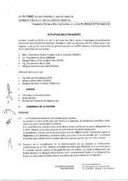 Acta N° 10 - Digesa