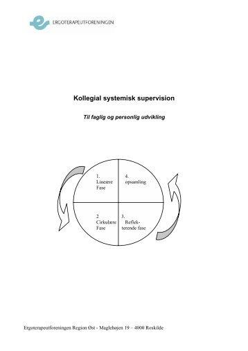[pdf] Kollegial systemisk supervision - Ergoterapeutforeningen
