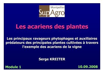 Les acariens des plantes