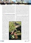 BEZBEDNOST JE JAVNO DOBRO - Page 3