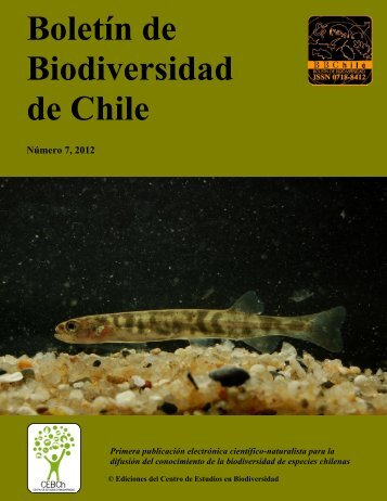 PDF - boletín de biodiversidad de chile