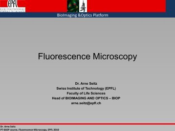 Fluorescence Microscopy - BioImaging and Optics platform (PTBIOP ...