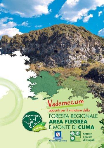 Vademecum Cuma - Regione Campania