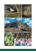 Vademecum Cuma - Regione Campania - Page 6