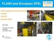 FLASH and European XFEL