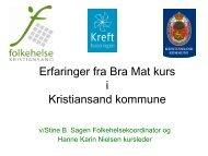 Hanne Karin Nielsen 8.12.10 - Aust-Agder fylkeskommune