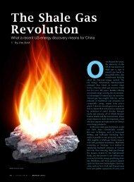 The Shale Gas Revolution - AmCham China